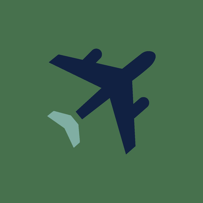 Prize Icon_Plane sage